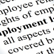 What You Need To Know About Employment Law
