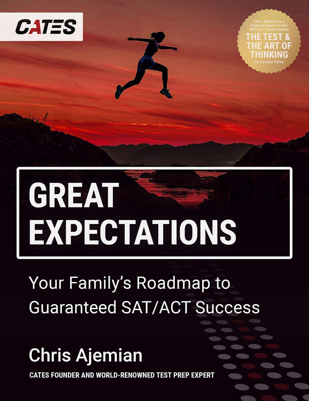 Great Expectations by Chris Ajemian book cover